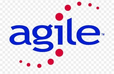 Agile Project Management Practitioner (Online Training)
