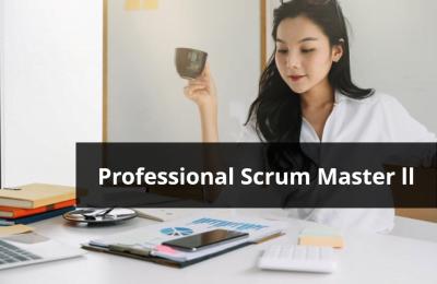 Professional Scrum Master (PSM) ll