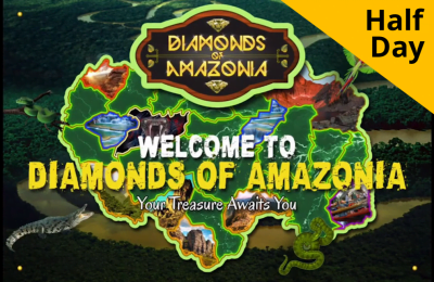 Diamonds of Amazonia (Online Training)